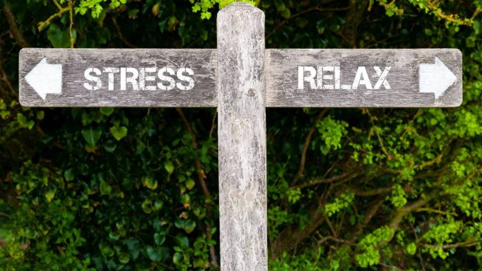 stress conseils pratiques